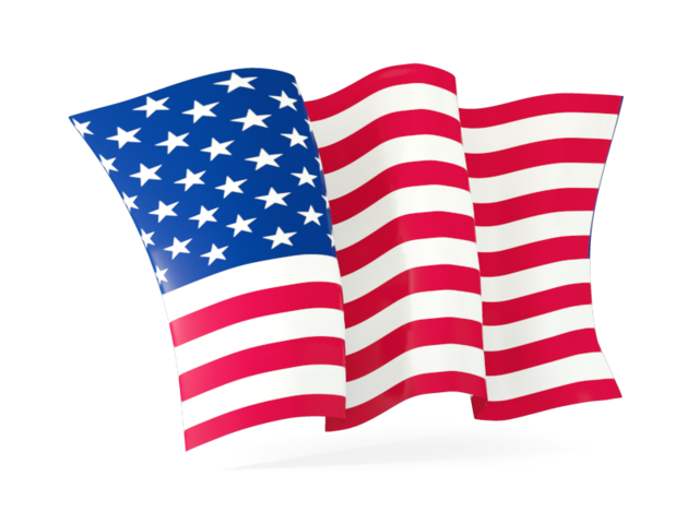 Image result for usa icon png