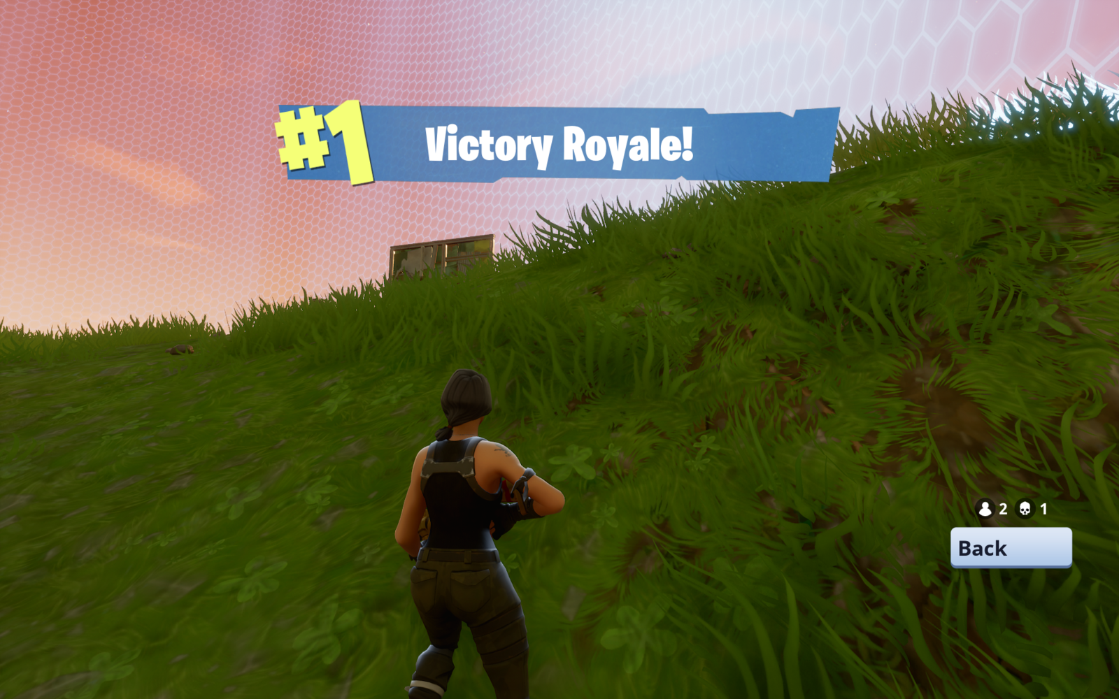 Victory Royale PNG HD image #47381