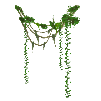 Vines Png image #43670