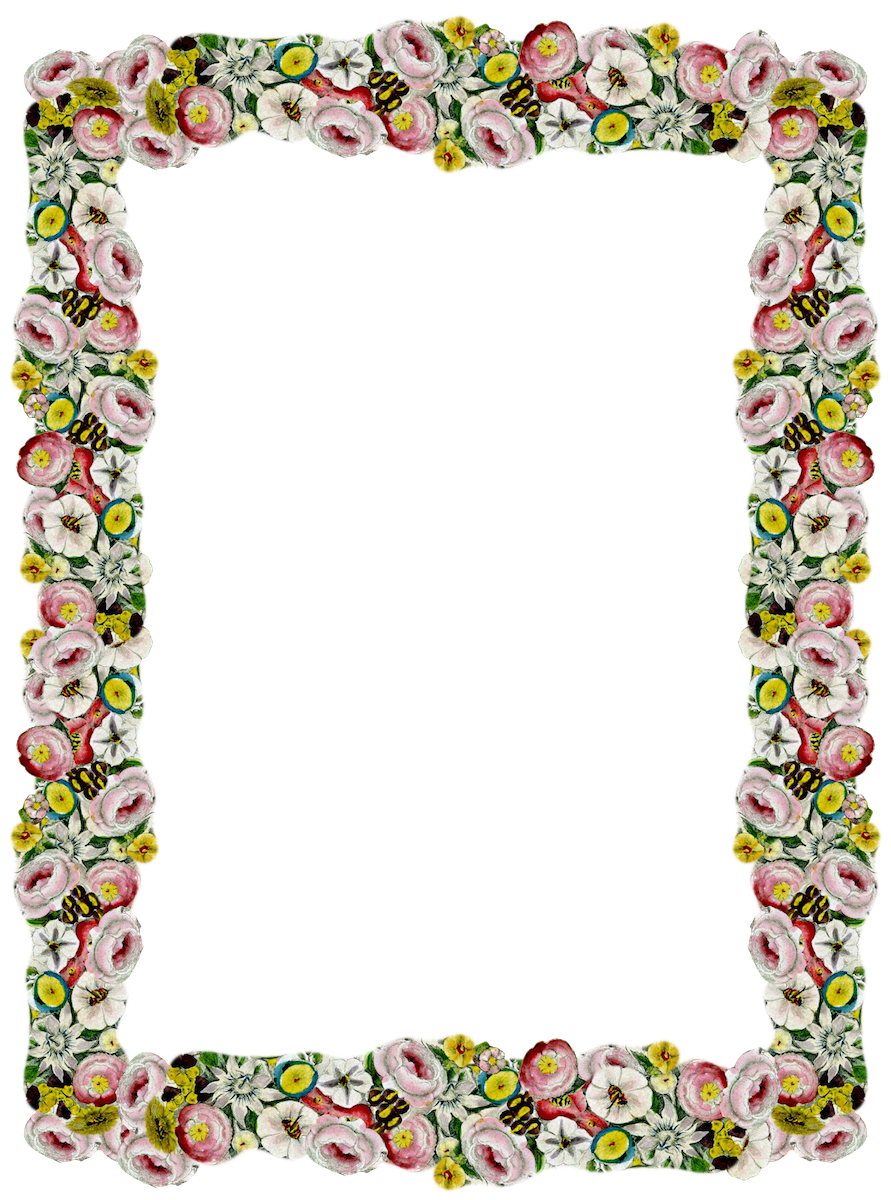 Vintage border transparent png pictures free icons and png backgrounds - Marcos transparentes ...