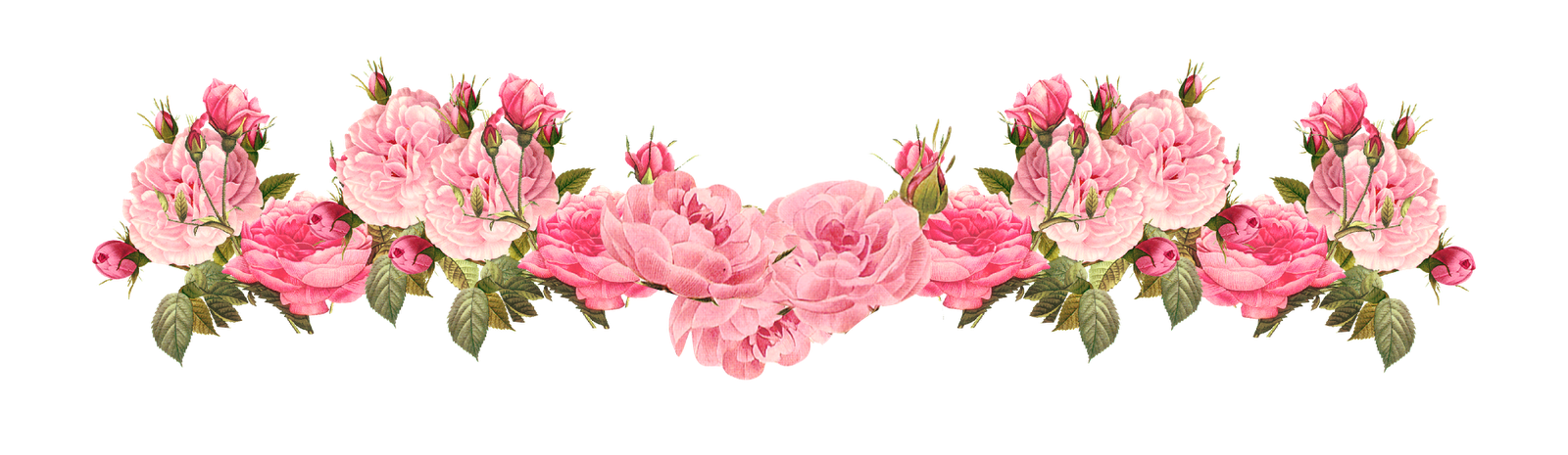Vintage Pink Rose Border Png 33548 Free Icons And Png Backgrounds