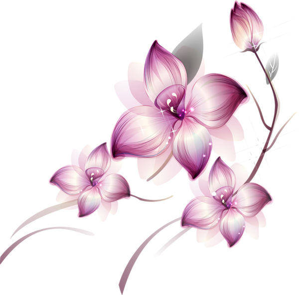 Violet Lotus Flower Transparent Background Uffbits 6213 Free