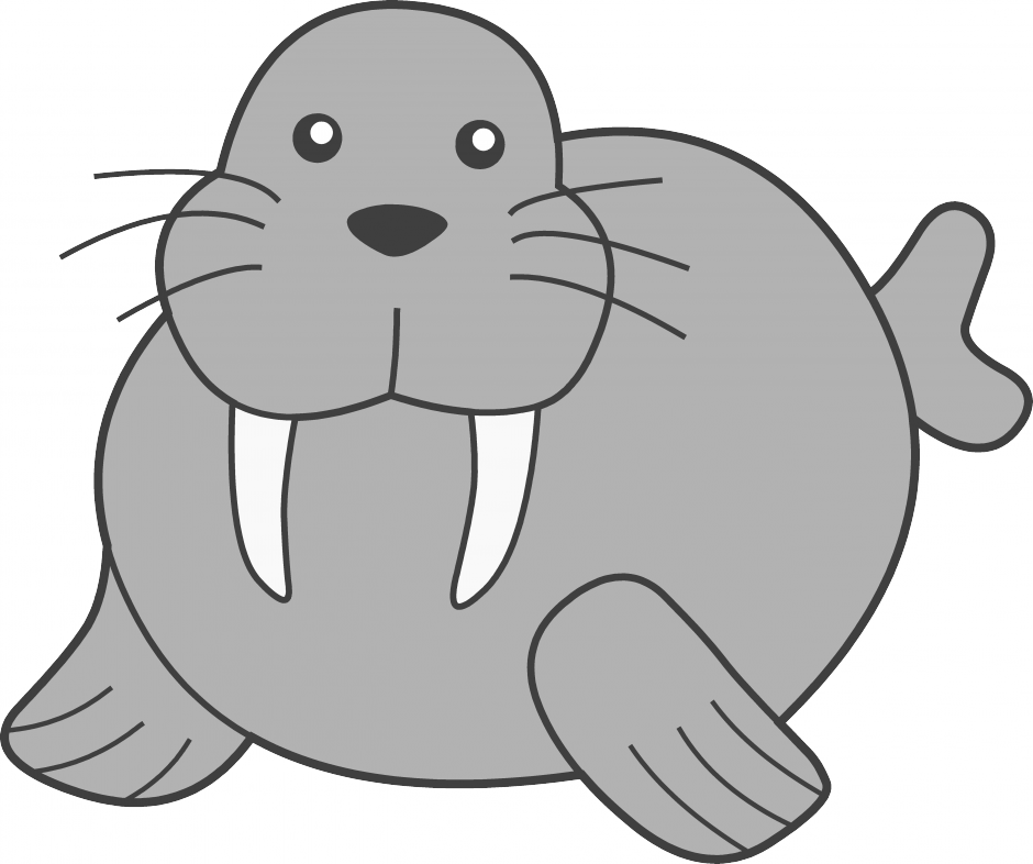 Walrus Vector Png image #48641