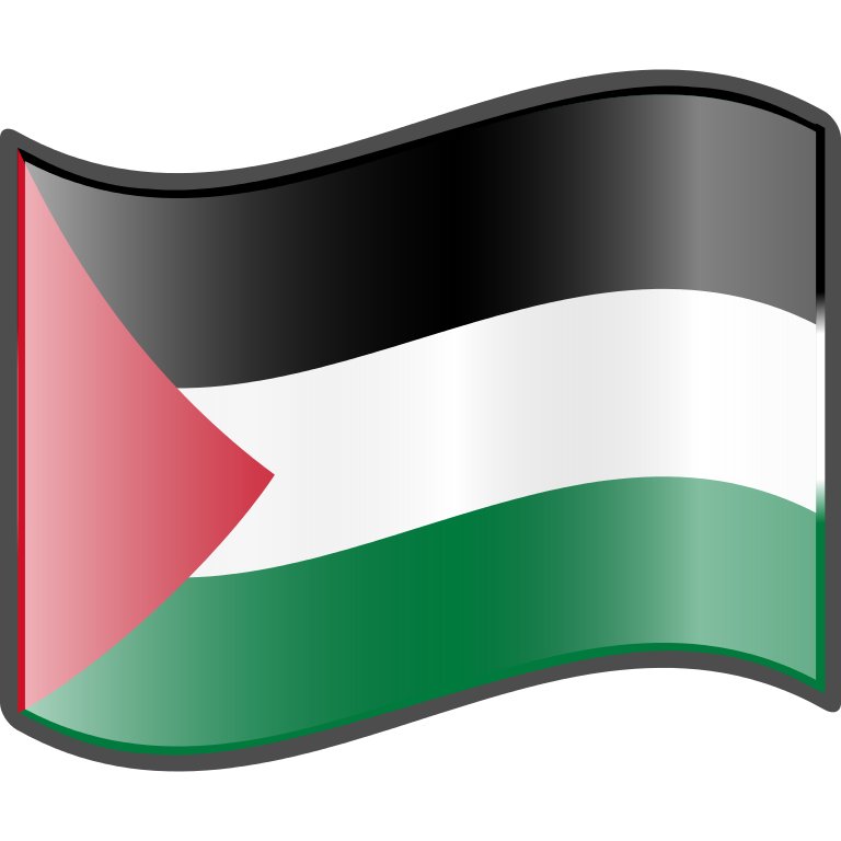 Wave, Palestinian, Palestine Flag Png image #38269