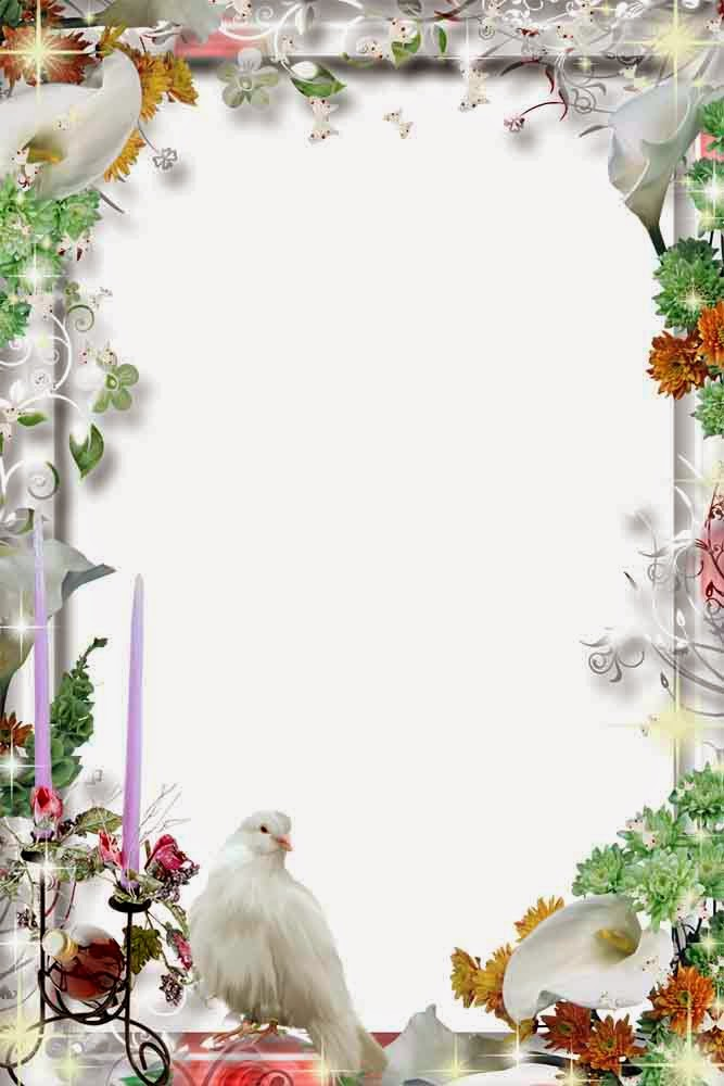 Wedding Frame Png Available In Different Size image #35186