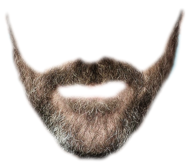 Whiskers And Beard Png image #44583
