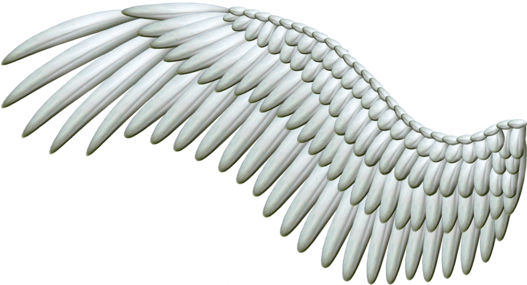 White Angel Wings Png image #36438