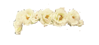 White Flower Crown PNG image #42609