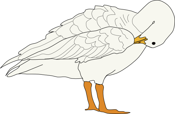 White Goose Png Images image #33526