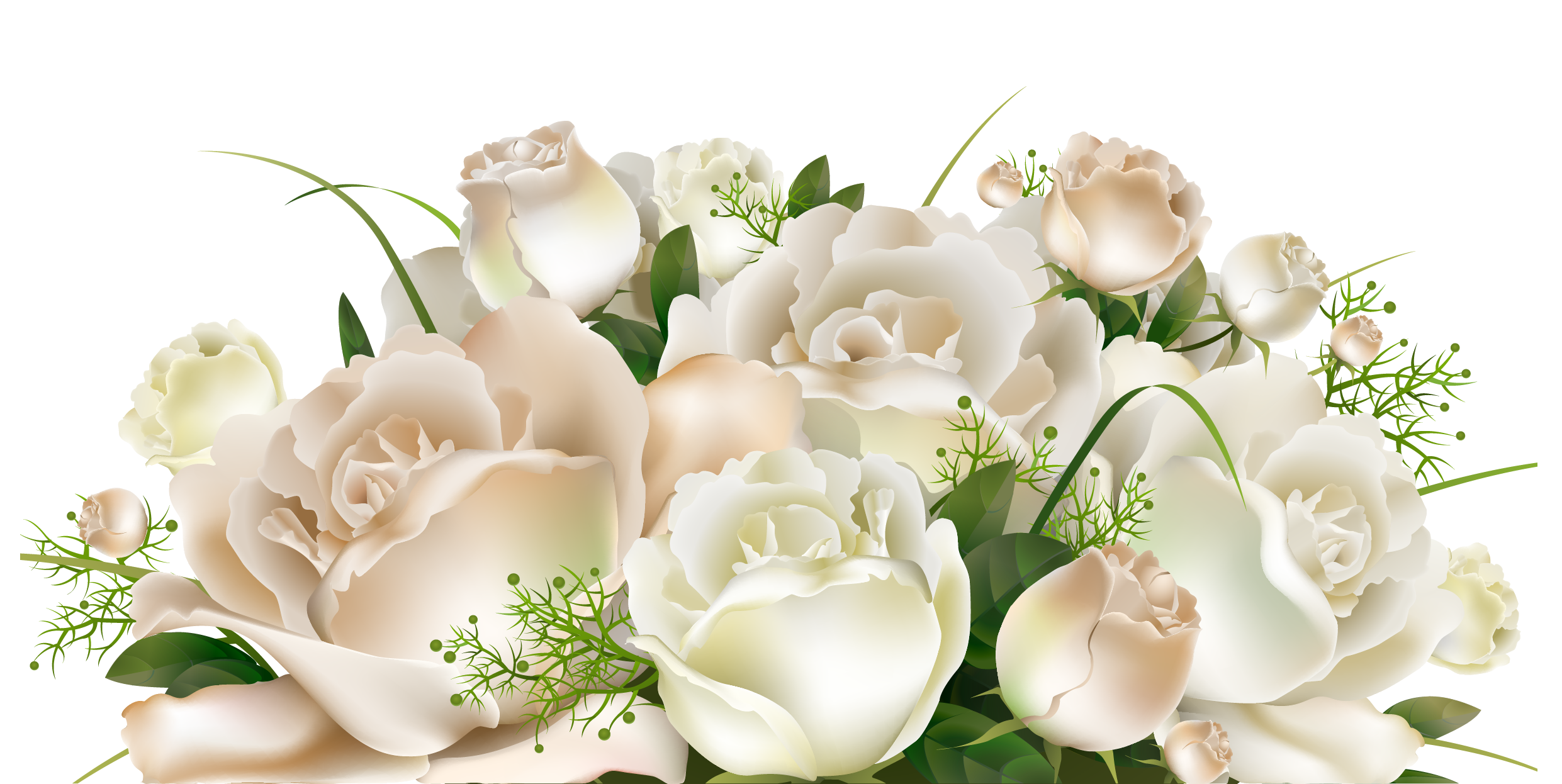 White Rose, Flower Rose, Flower Bouquet, Flower image #48802