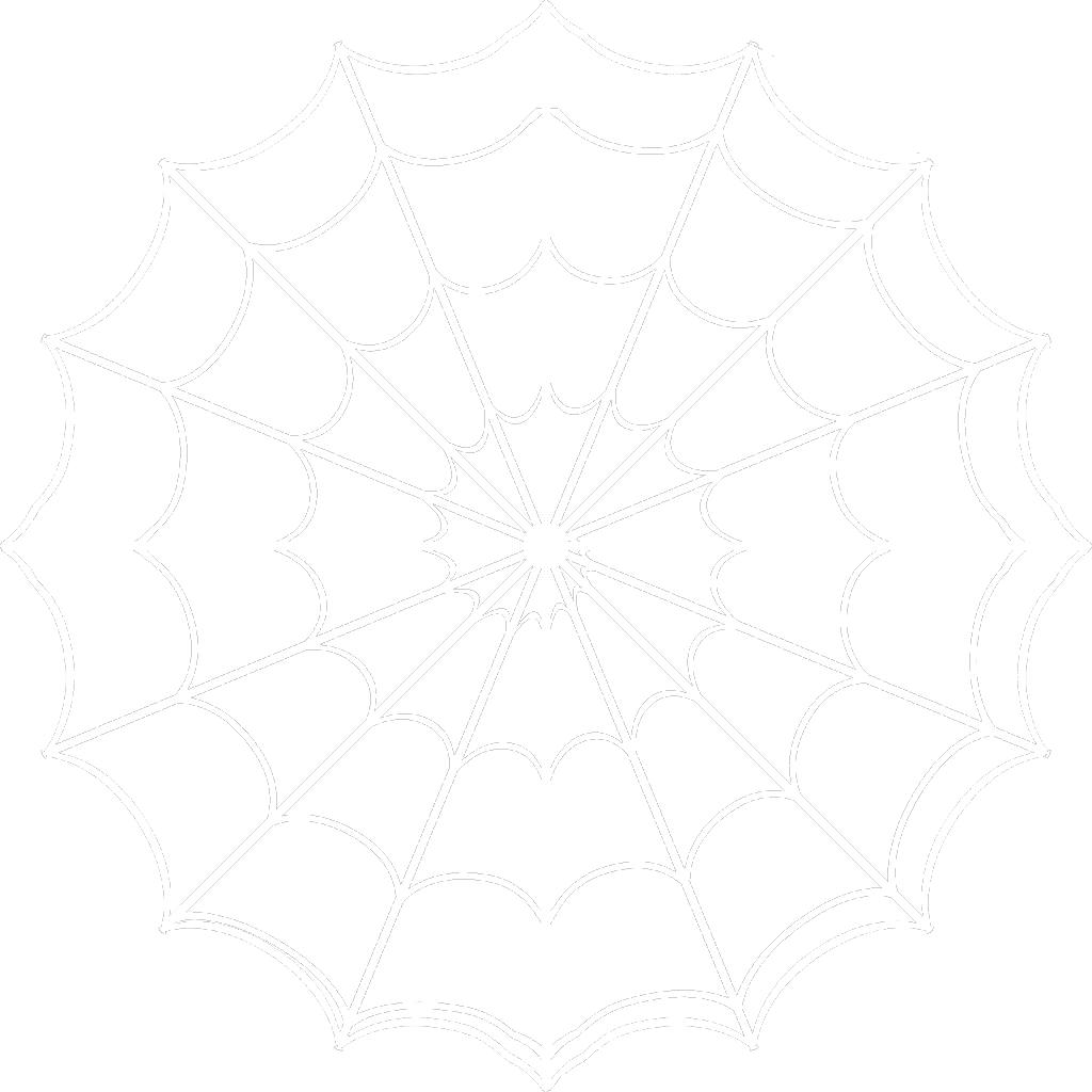 White Spider Web Png image #34733