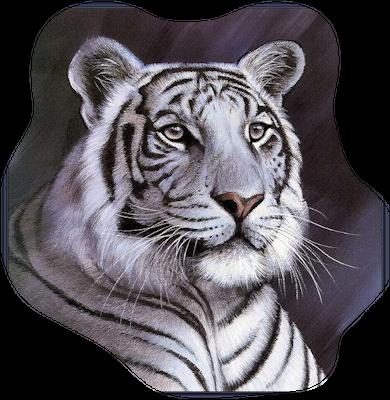 Image result for white tiger png