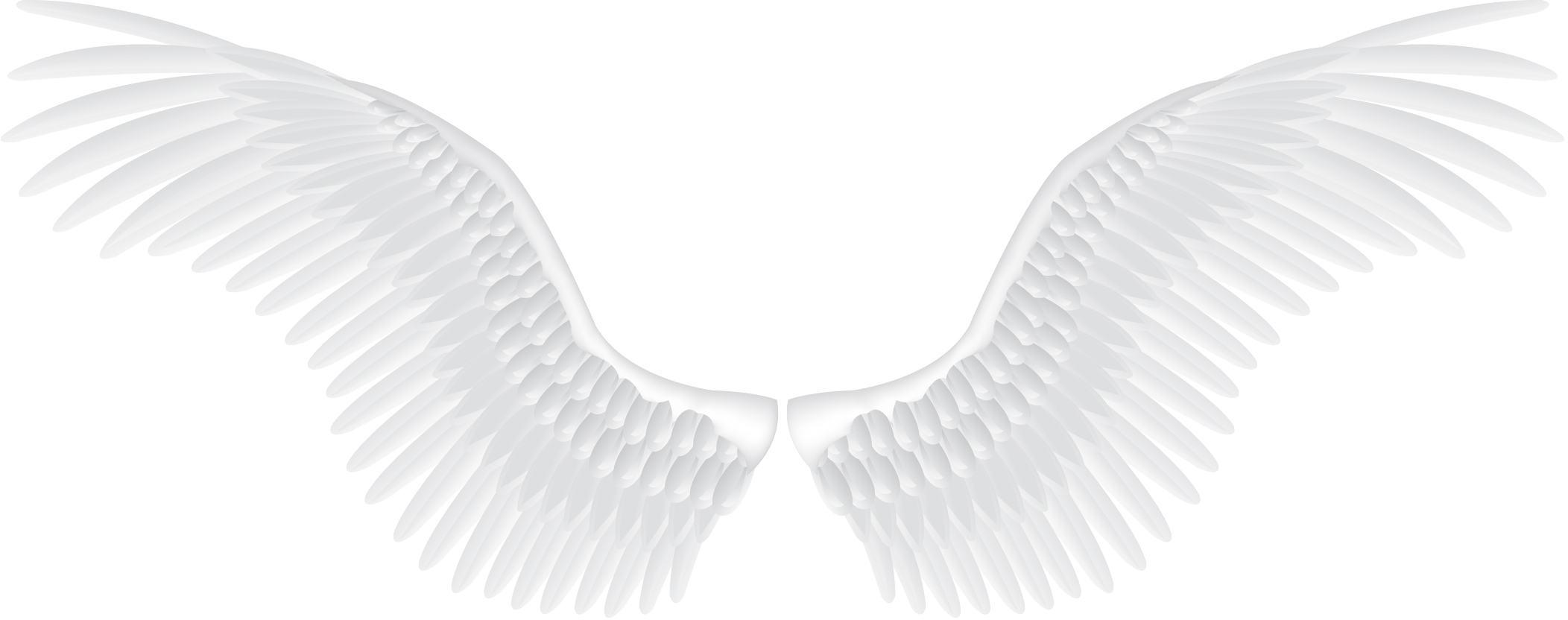 Background Png Hd Wings Transparent image #36461