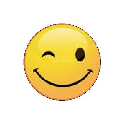 Winking Smiley Save Icon Format image #14746