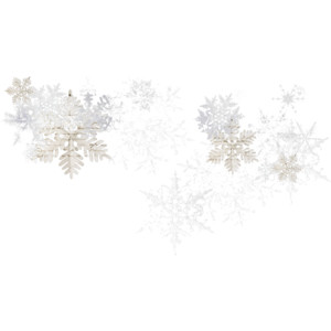 Winter PNG Photo image #27408
