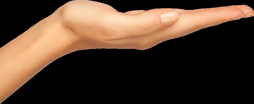 Woman Hands, Handful Png image #44745