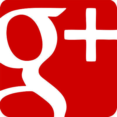 XXL Google Plus Style logo Vinyl Graphic Decals Car Shop window