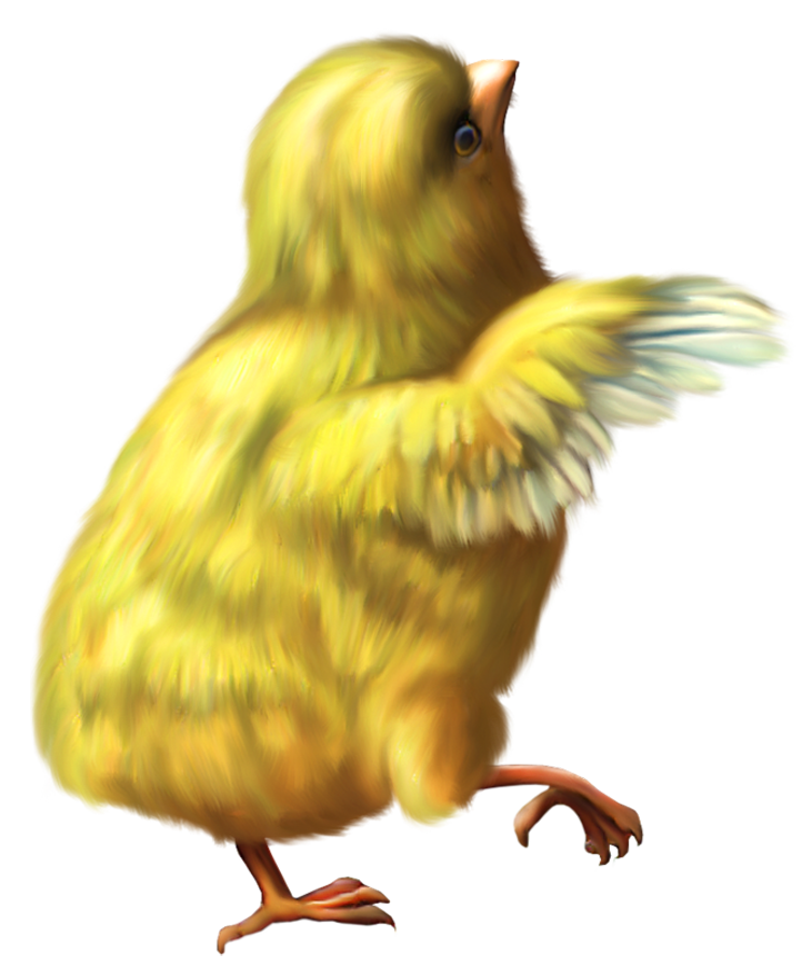 Yellow Baby Chicken Png image #40292