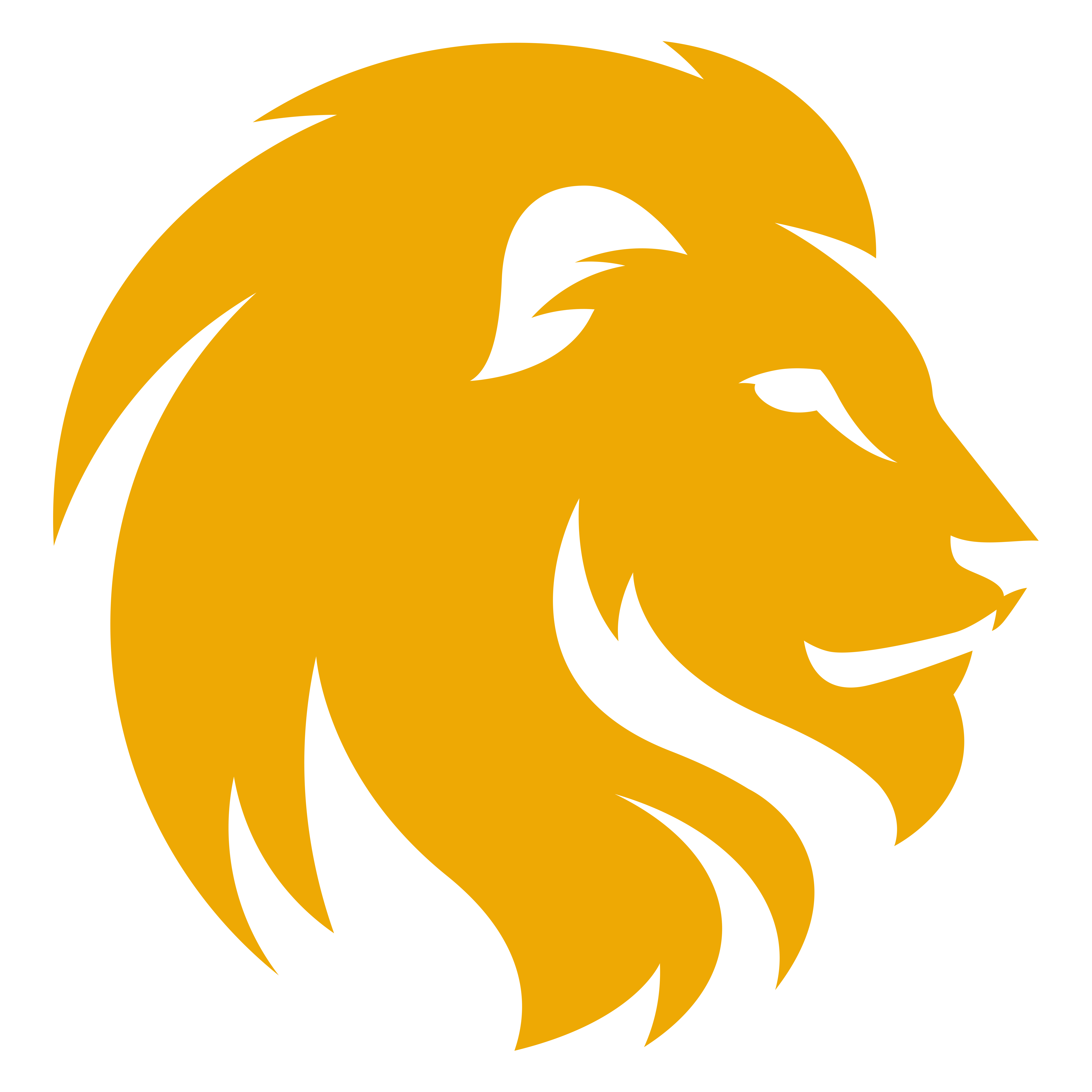 Yellow Lion Head Png image #37125