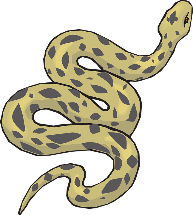 Yellow-Spotted Anaconda Pictures image #48145